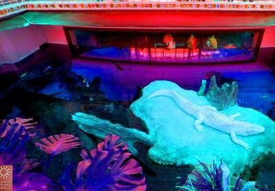The Steinhart Aquarium