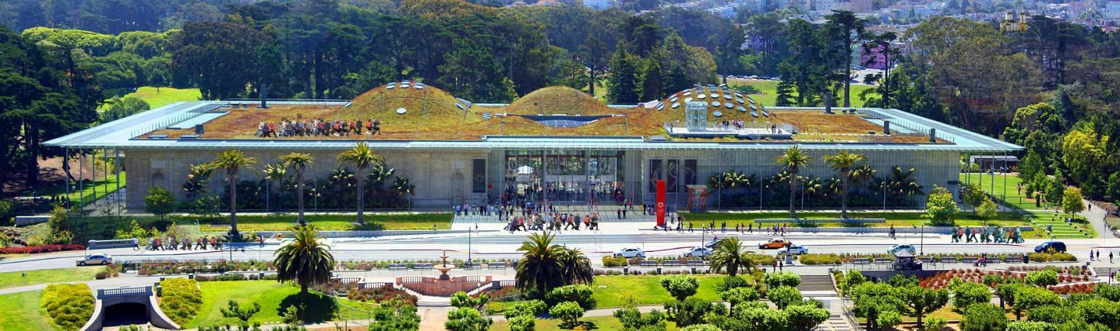Visit California Academy