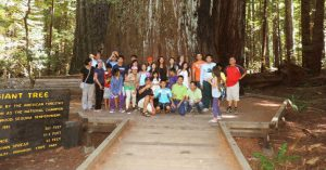 Visit Rockefeller Forest of Giant Redwoods